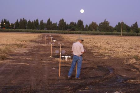 Sentinel cages used in ground ULV trials- open field